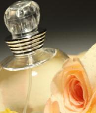 huiles essentielles de rose