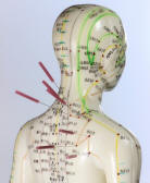 meridiens acupuncture