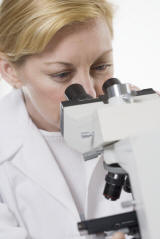 examen bacteries intestin au microscope