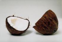 graisse de coco