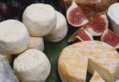 fromages de chevre