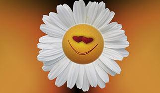 un sourire séducteur