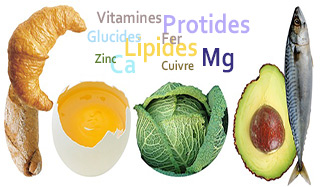 connaitre ses besoins nutritionnels