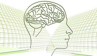 tête et cerveau