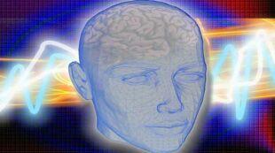 fonctions cérébrales