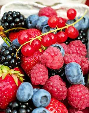 fruits et baies