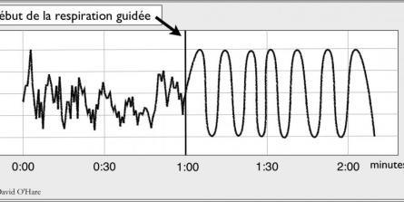 courbe de fréquence cardiaque et cohérence